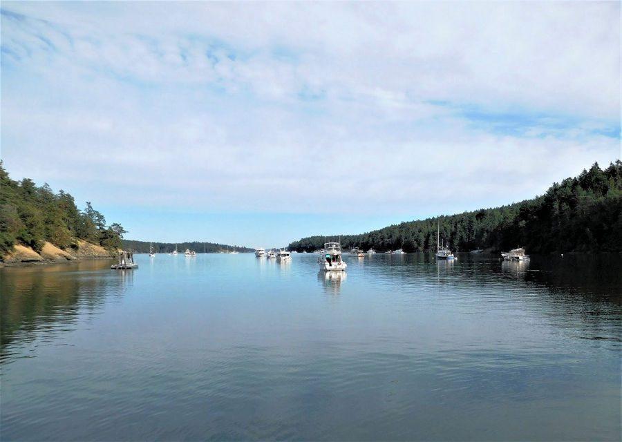 Stuart Island: A Country Scene