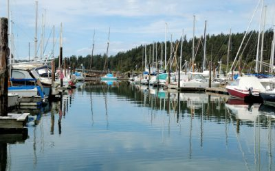 Another Side of the San Juan Islands – West Sound Marina