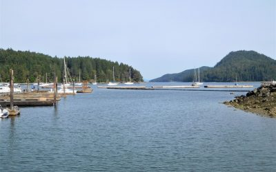 Surprising Finds at Port Browning with Island Hospitality
