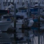 Clean Marinas Benefit the Environment & Marinas