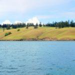 The Spell of Spieden Island