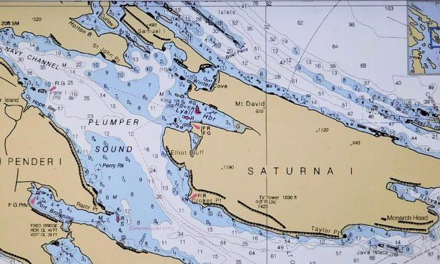 Lamb Barbeque – Saturna Island