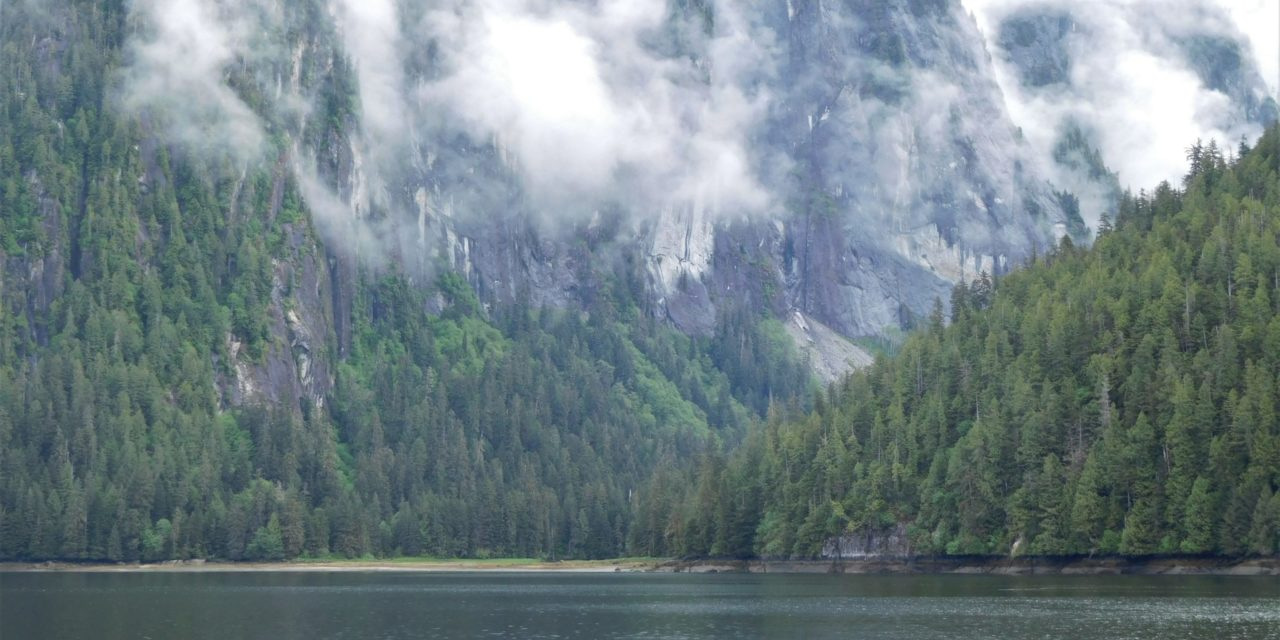 Natures Cathedral – Misty Fjords National Monument