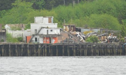 The Ghost Town of Namu on Fitz Hugh Sound