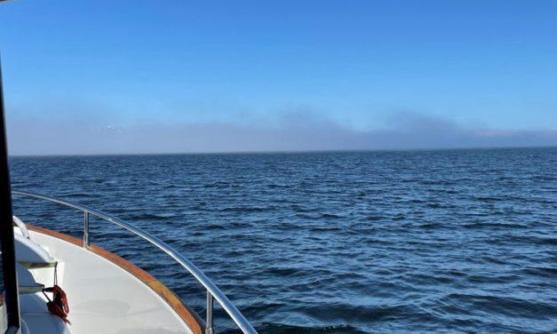 Are You Prepared to Navigate in Fog?