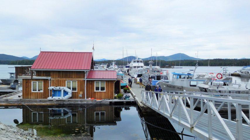 Boats at Shearwater Marina