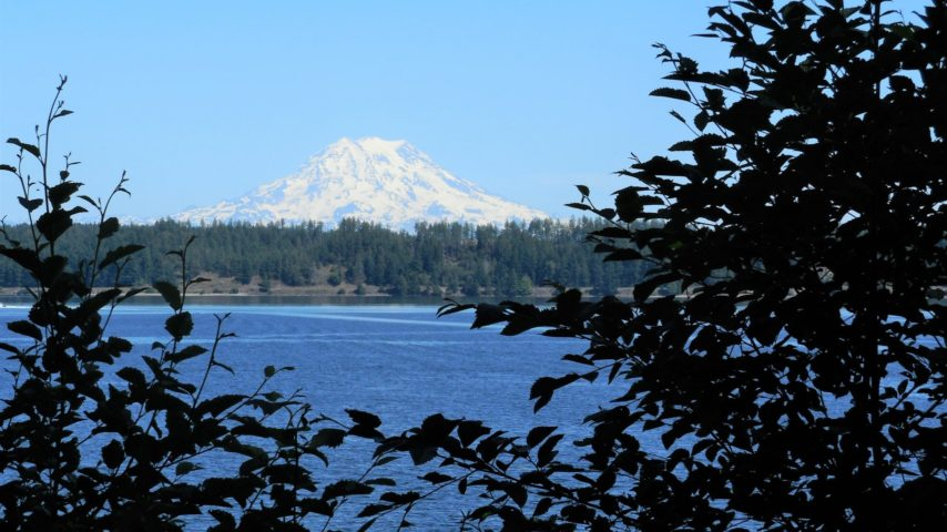View of Mt Rainier from Oro Bay