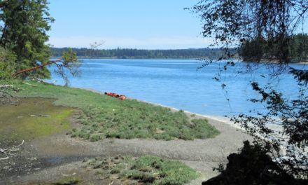 Rediscovering Oro Bay on Anderson Island