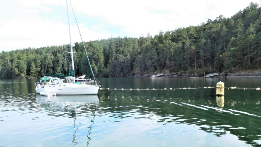 Sailboat on lineal side-tie mooring system