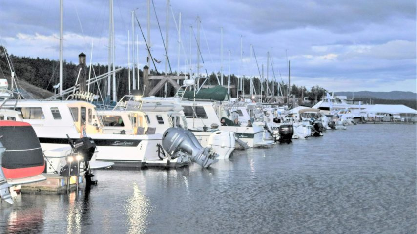 Sea Sport boats lined up in their rendezvous slips at Friday Harbor